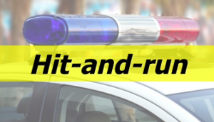 Hit-and-run Lee County